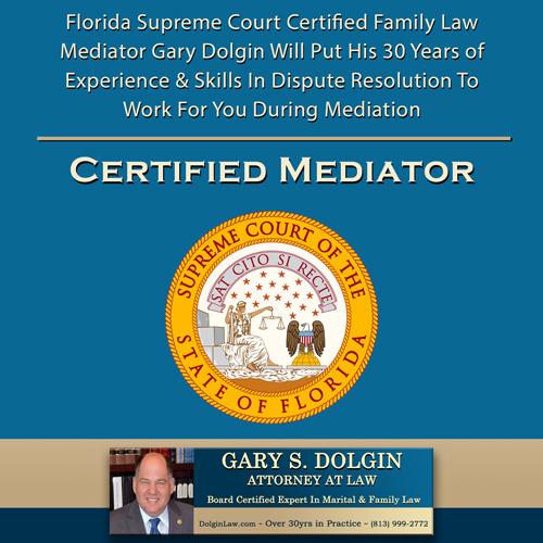 Tampa Child Custody Mediation Lawyer
